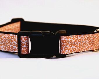 Orange Blossom Dog Collar