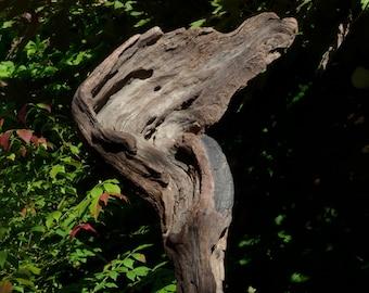 Driftwood centrepiece, Ornamental Art