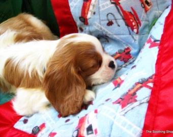 Pet Blanket, minky 14x20 inch pet quilt with satin edge, furry friend!