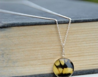 Real butterfly wing set in sterling silver bezel under resin on long sterling necklace. Nature jewelry, butterfly jewelry