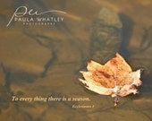 Ecclesiastes 3, There is a season, Fall Leaf photo, Autumn Photo, leaf photo, motivational print, bible quote, bible verse, Christian art