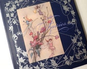 Fairy Book - Fairies - Illustrated Book - Blue Lantern Book - Elves Book- Woodland - Poetry