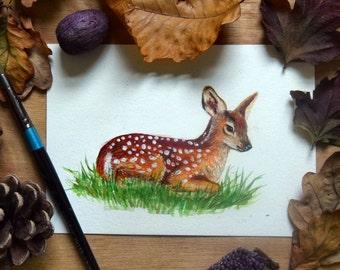 "Original watercolour 5 x 7"" Faun, wildlife art"