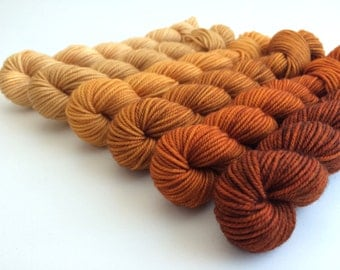 Hand-dyed Merino Sport Gradient Set - approx 360 yds - TIGER LILY