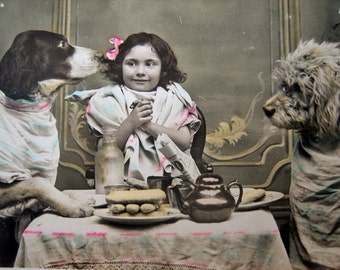 Antique French photo postcard, antique dog photo postcard, dressed up dogs, girl with dog photo postcard, antique children photo postcard