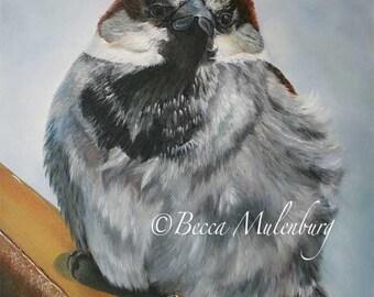 bird painting sparrow original oil house sparrow wildlife nature fine art