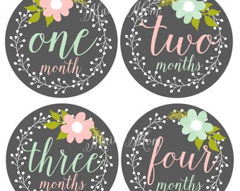 FREE GIFT, Baby Girl Monthly Stickers, Baby Month Stickers, Milestone Bodysuit Floral Wreath, Photo Prop Pink Mint
