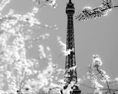 Black and White Paris Print, Eiffel Tower, Spring, Cherry Blossoms, Bedroom Wall Art, Neutral, Paris Photography