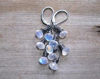 Rainbow Moonstone Cascade Earrings,  Sterling Silver,  Moonstone Jewelry, Oxidized Sterling Silver, Cluster Earrings