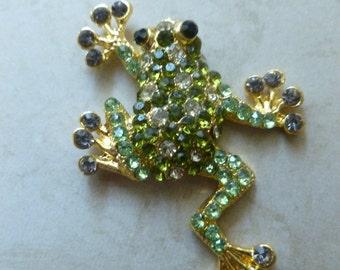 Climbing Frog Magnet