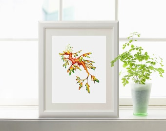 Leafy Sea Dragon Watercolor Print, Seahorse Print, Seadragon print, Seahorse painting, Seahorse watercolor, Seadragon, Ocean, Beach Decor