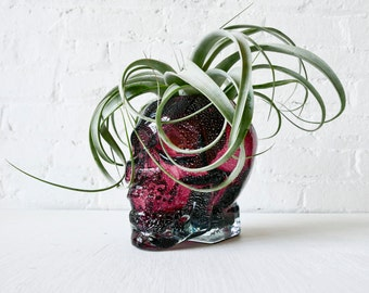Large Purple Glass Crystal Skull - HUGE Air Plant Garden Planter - One of a Kind Gift
