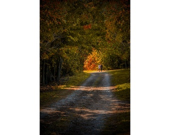 Couple walking on a Dirt Road through a Tree Canopy during Autumn in West Michigan No.6204 A Fall Fine Art Landscape Photograph