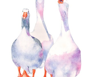 Geese print of watercolour painting 5 by 7 size, G14216, Goose print, goose watercolour painting, goose print, art for nursery,