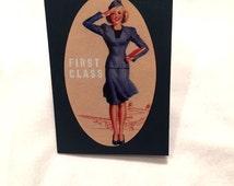 Fabulous Flight Attendant Passport Cover (1)