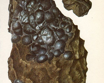 Vintage 1950 PITCHBLENDE Minerals Print 98 Antique Gems Precious Stones print gemstones print, bookplate art print, minerals wall art print