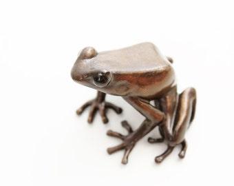 Poison dart frog - medium - Bronze