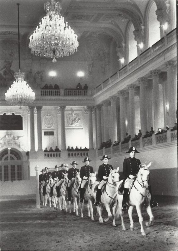 The Ring Vienna S Casual Luxury Hotel Vienna: Entering The Ring Vintage 1960s Vienna Spanish Riding School