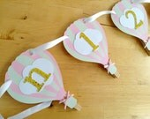 Pink Gold Hot air balloon photo banner newborn to 12 month 1 year picture banner