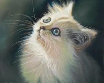 White Cat Art - Cat Lover - Cat Decor - White Kitten Art