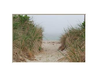 Sand Dunes Beach Photography Cape Cod Photograph Sandy Path Wall Art Coastal New England Home Fog Decor Ocean Mist Sand Beach Path Art