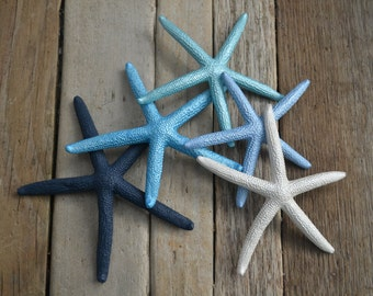 Painted Starfish 3-4"