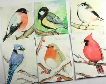 Watercolor ACEO PRINT Aquarelle Painting Bird ATC Beautiful Realistic Birds Fine Art Print Artwork Wildlife Sketch Card