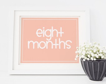 Baby Monthly Signs Peach Pink / Baby's First Year / 8x10 DIGITAL Monthly Photo Prop / DIY Printable Milestone Signs / Set of 16