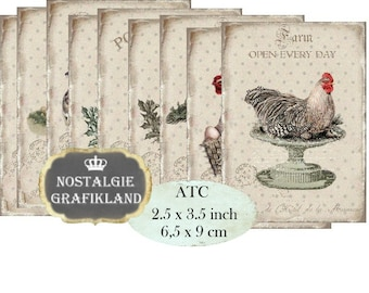Farm Rooster Hen Eggs Chicken Poulet Le Coq Chicks printable Instant Download ATC digital collage sheet S089