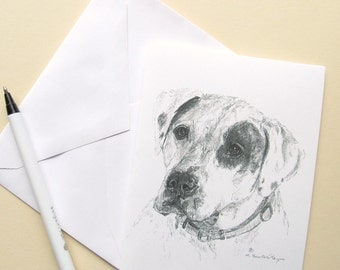 American bulldog note cards, set of 6 with envelopes