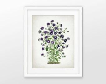 Violet Flower Print - Flower Illustration - Violet Wall Art - Botanical Flower Art - Botanical Print - Single Print #1586 - INSTANT DOWNLOAD