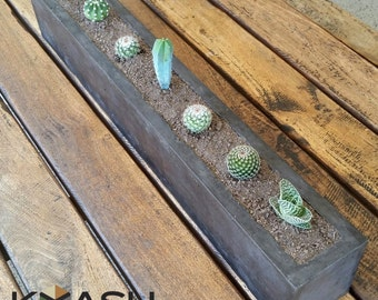 Concrete geometric planter or pot plant holder. by KyashCubes