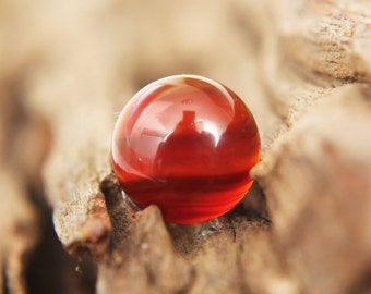 Gemstones - Red Agate cabochon - 14mm round - autumn / rust / red / earth / peach / amber / white / clear