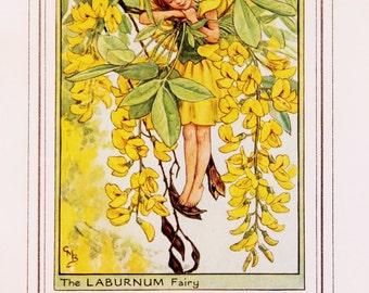 Laburnum Fairy - 1930s Vintage Flower Fairy Print by Cicely Mary Barker