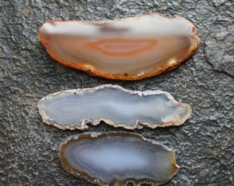 Agate Slices - Brown Earth Tones Set