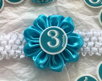Endearing Aqua Baby Girl Month Sticker Headband, Milestone Month Headband, Baby Girl Monthly Headband, Monthly Sticker, Felt Flower Headband