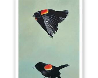 Ennui Is Unheard Of Among Aerial Phenomena - 11 x 14 Art Print - Blackbird - Giclee - Gift