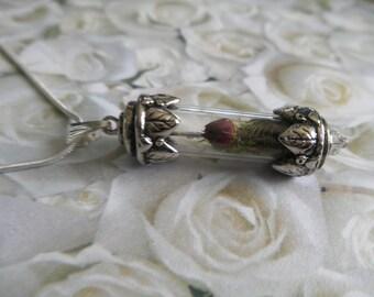 Red Rosebud Reliquary Terrarium Pendant w/Reindeer Moss-June's Birth Flower-Symbolizes True Love,Harmony,Hope,Balance-Gifts Under 40