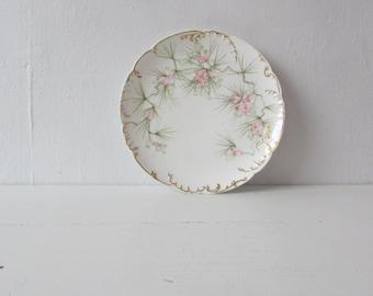 1888 - 1896 Haviland China | vintage 1800s china | vintage floral china | vintage dinnerwear
