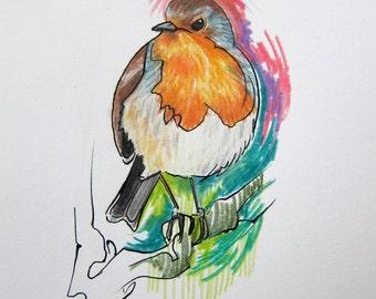 Robin bird original drawing