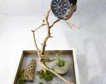 Mini Manzanita Tree Air Plant Jewelry Holder/Jewelry Storage Centerpiece