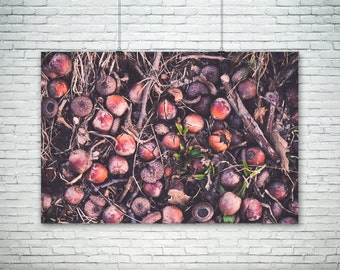 Nature Photography, Rustic Home Decor, Autumn Decor Print, Forest Floor Print, Woodland Photography, Forest Nursery Large Canvas Wall Art