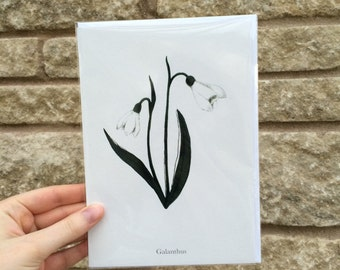 Snow Drop greetings card