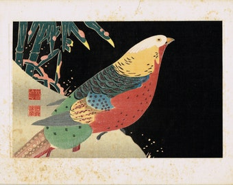 "1925, Ito Jakuchu, Japanese antique woodblock print,  ""Parrots"""