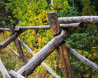 Colorado Fence Line, Fine Art Photography, Digital Download, Colorado, True North Photography, Fall, Travel, Adventure, Rocky Mountains