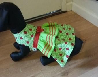 Ladybug dog dress