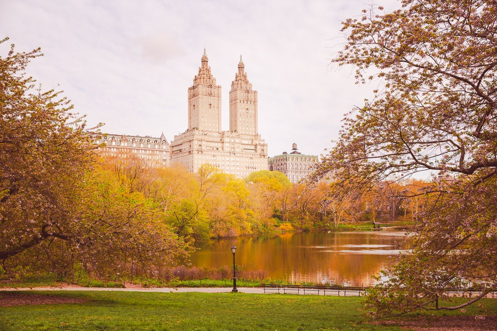 Central park print autumn decor city prints tree wall for Central park mural