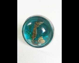 Blue Seahorse & Shell Specimen Ring