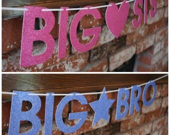 Pregnancy Banner, Big Bro Banner, Big Sis Banner, Pregnancy Announcement Banner