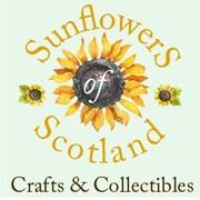 SunflowersOfScotland